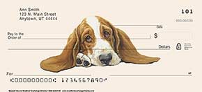 Basset Hound Checks