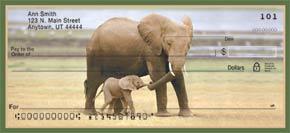 Safari Babies Personal Check Designs
